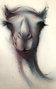 Portrait of a Camel - 533mm x 863mm